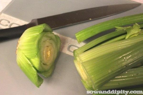 starting celery