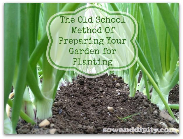 Preparing a Garden for Planting