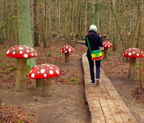 Wooden Mushrooms