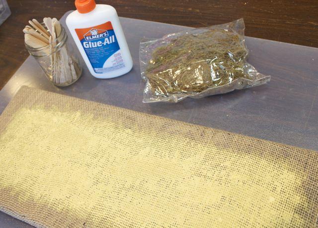 Moss and glue