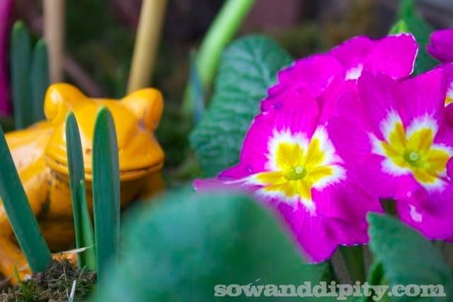 Kickstart Your Spring Garden Now