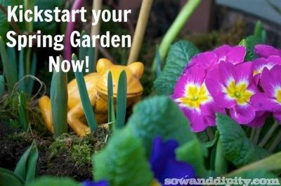 Spring planter (2)