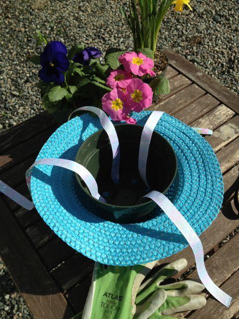 straw hat planter
