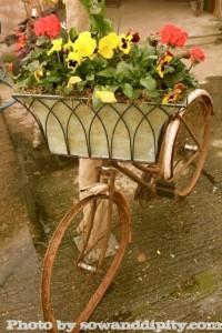 Rusty Bike Planter