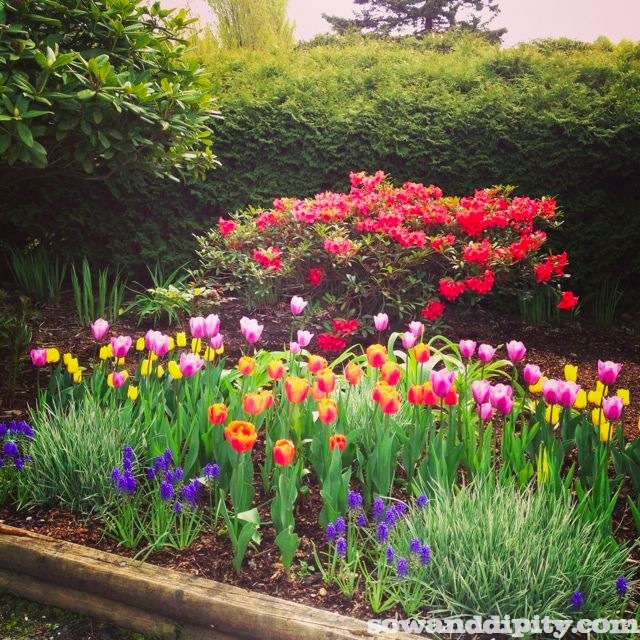 Bulb Display Vancouver Art Gallery Cafe Garden