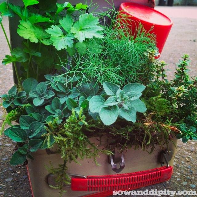 vintage lunchbox planter