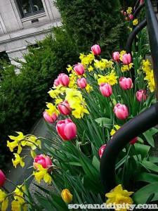 Vancouver Art Gallery Cafe Garden