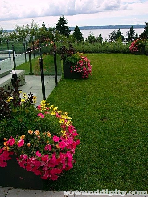 gorgeous planters