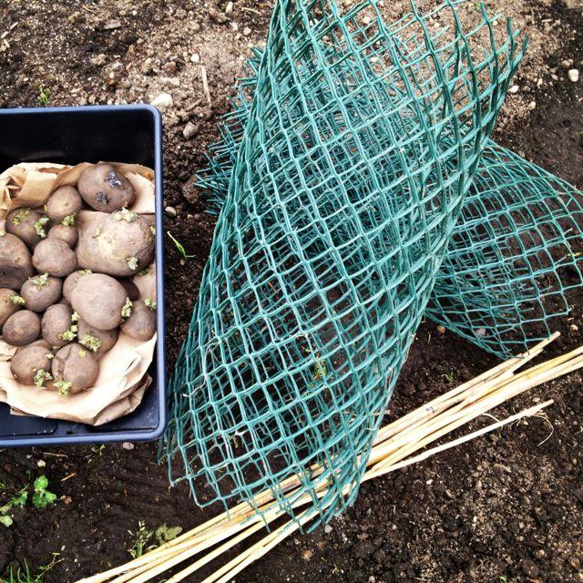 potato cage materials