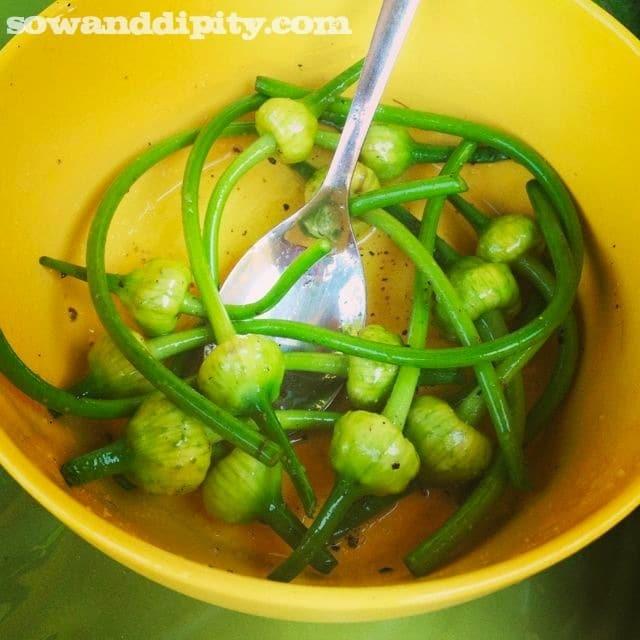 Seasoned Garlic Scapes