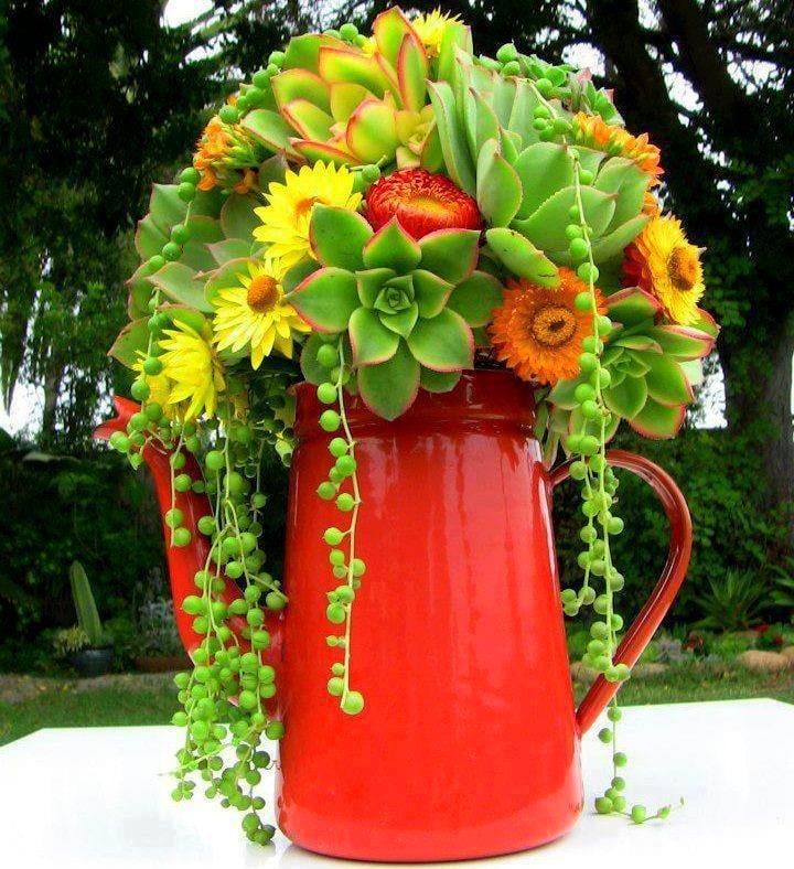 http://succulentlyurban.com/succulent-weddings/