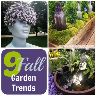 Fall garden trends