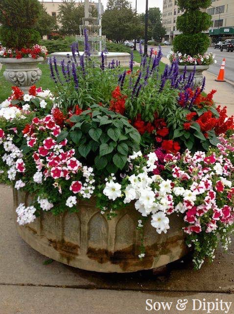 Planter Designs, Sow and Dipity 31