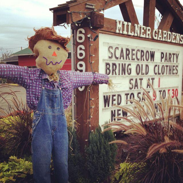 Scarecrow party