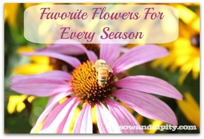 favoriteflowers