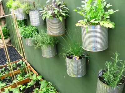 tin can planter