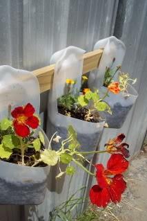 milk-jug-flower-pots