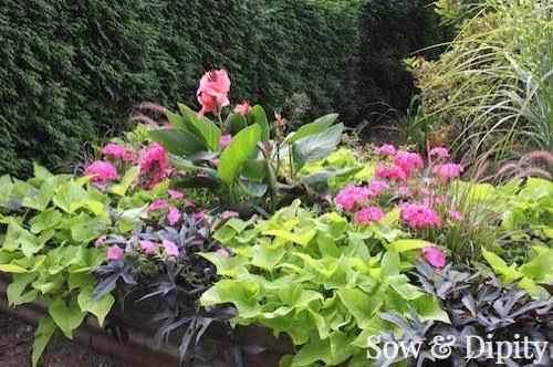 Gorgeous Planter