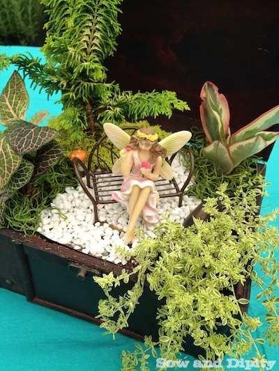 Fairy Garden in a wooden box