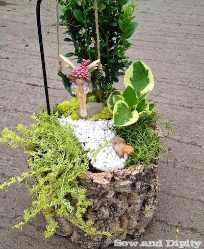 Fairy garden in a log (1)