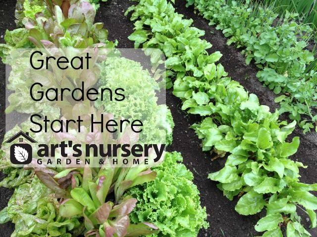 gardens arts