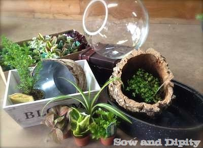 mini garden containers