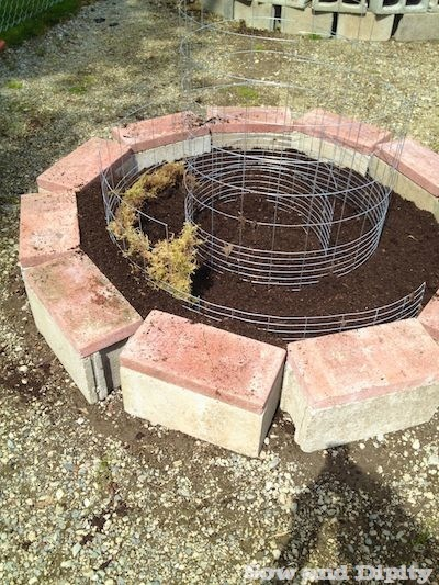 spiral garden (1)