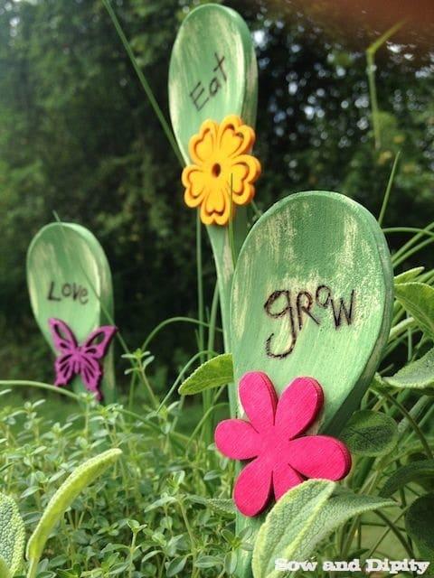 garden phlox (1)