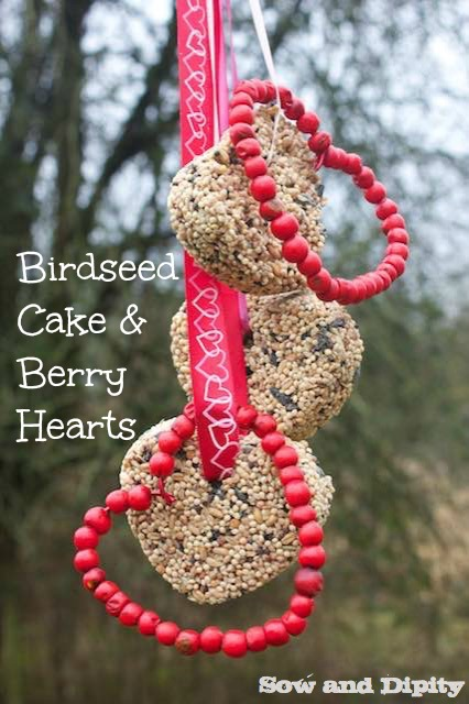 Birdseed cakes and Berry Hearts