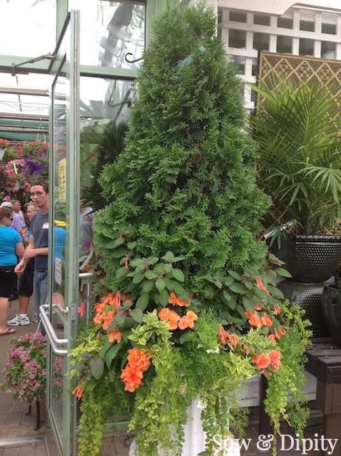 Large planter design (1)