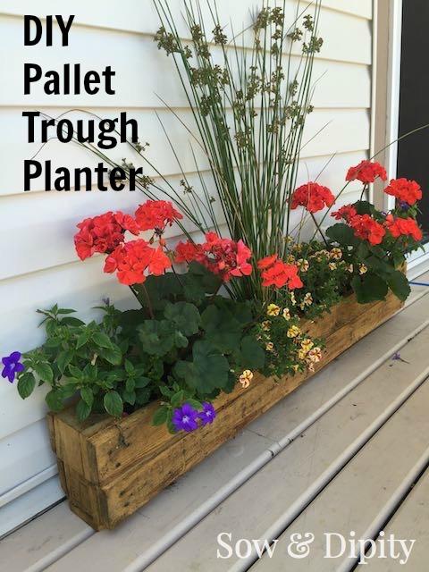 DIY Pallet Trough Planter