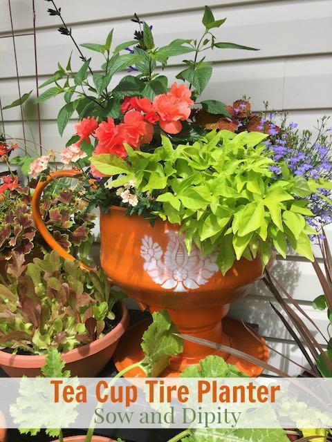 Tea cup tire planter