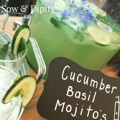 Cucumber Basil Mojito 1