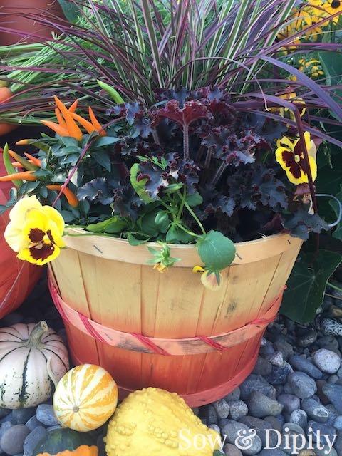 DIY dyed bushel baskets (4)