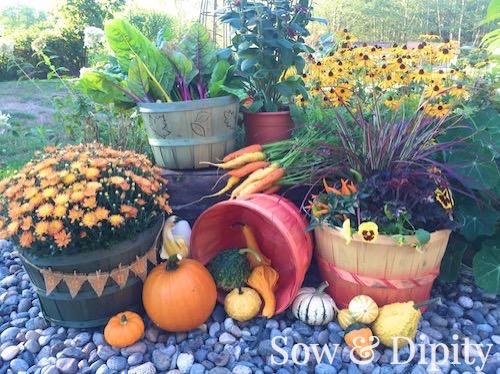 DIY dyed bushel baskets
