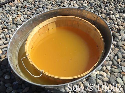 Dyed Bushel Baskets (2)