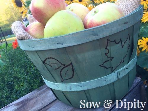 Dyed Bushel Baskets (4)