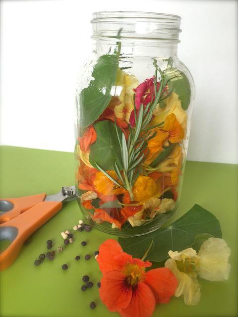 Herbal Oil's and Vinegars (6)