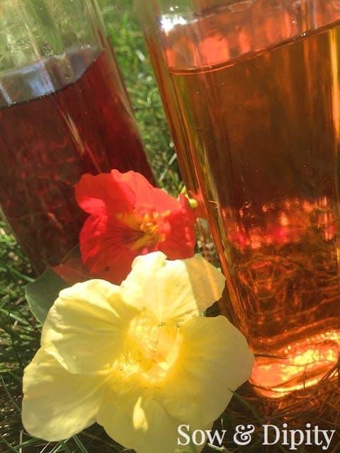 Herbal Oil's and Vinegars (9)