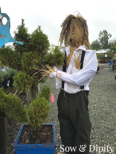 Edward Scissorhands Scarecrow