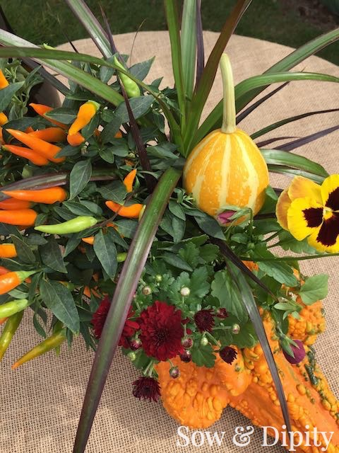 Fall crafts with gourds (4)
