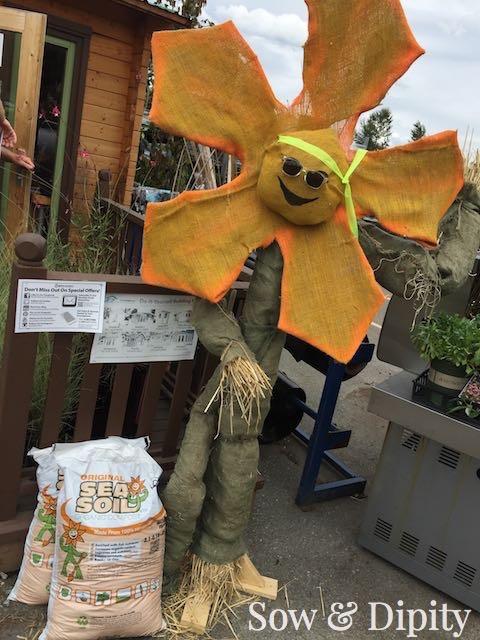 Flower Scarecrow