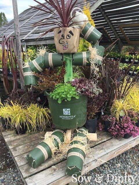 Plant Scarecrow