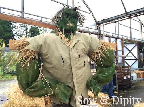 The Hulk Scarecrow