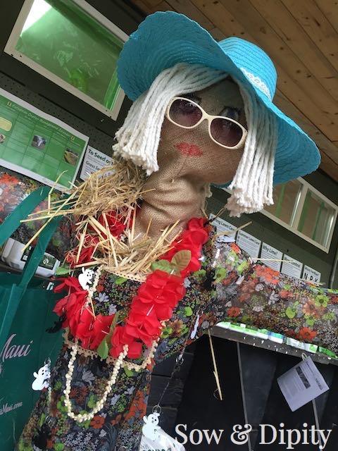 Tourist Scarecrow