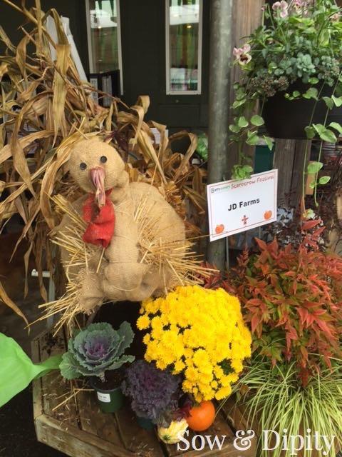 Turkey Scarecrow