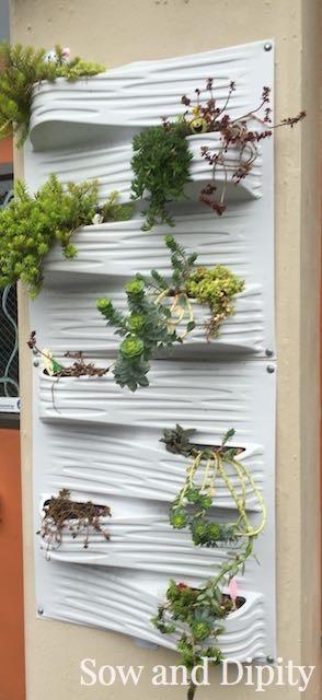 Indoor shower panels for plants
