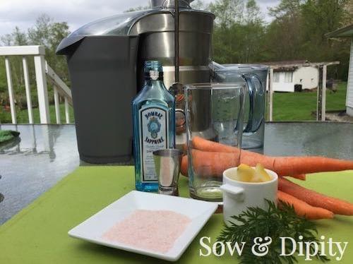 Carrot Juice Cocktail Recipe (1)