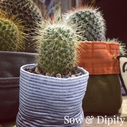 Fabric Cactus pots