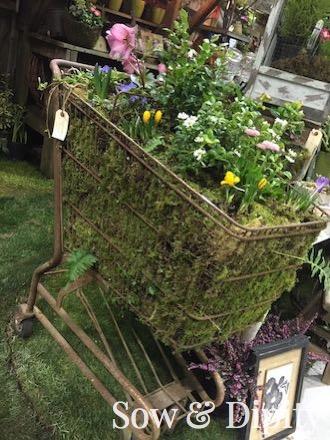 shopping cart planter